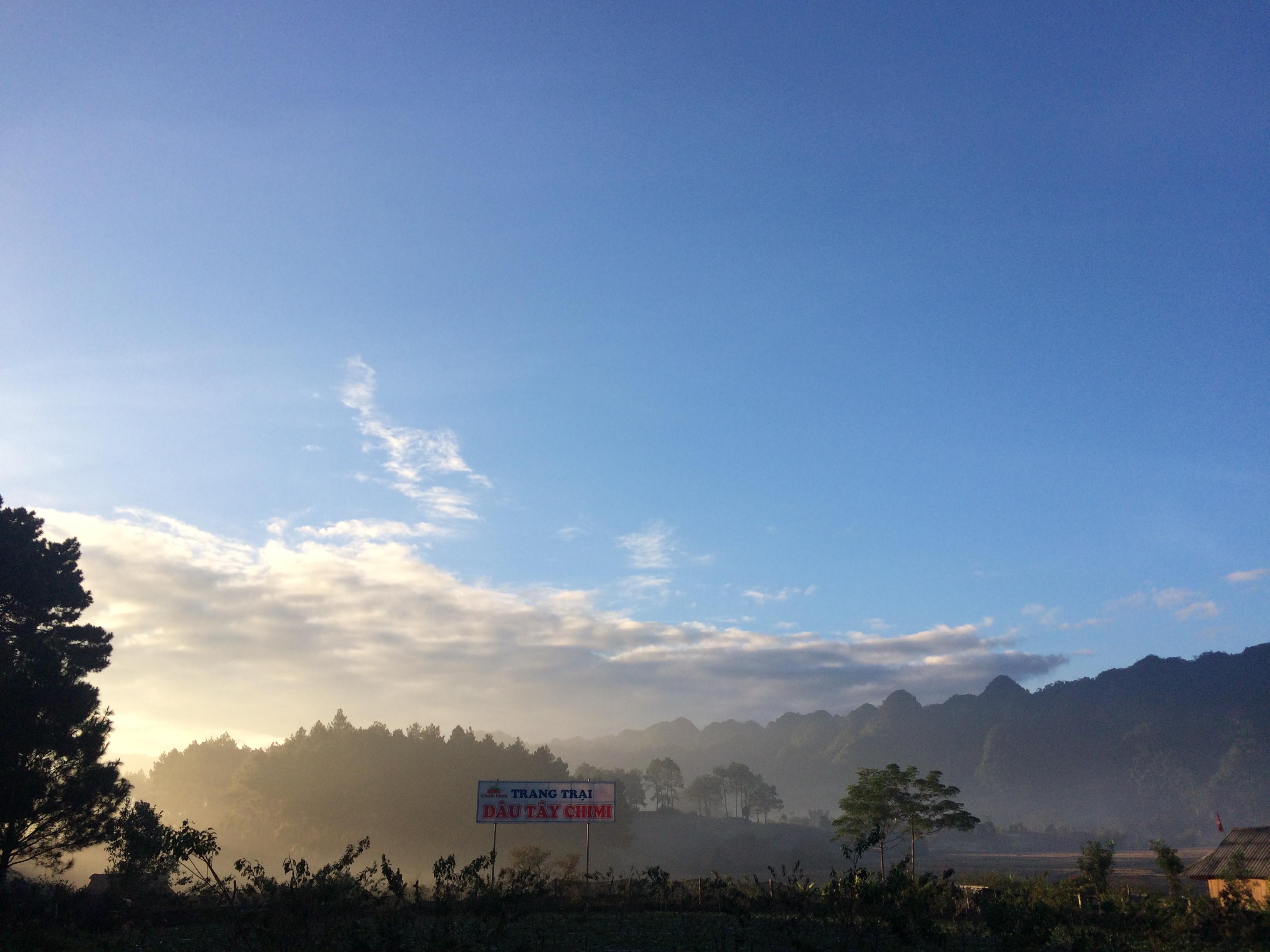 Trang trại dâu tây Chimi nằm ở cuối rừng thông Bản Áng