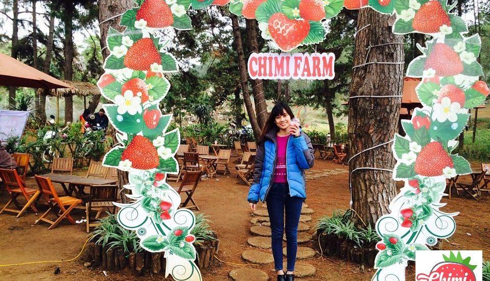 Tại sao trang trại dâu tây Chimi có sức hút các bạn trẻ như vậy?