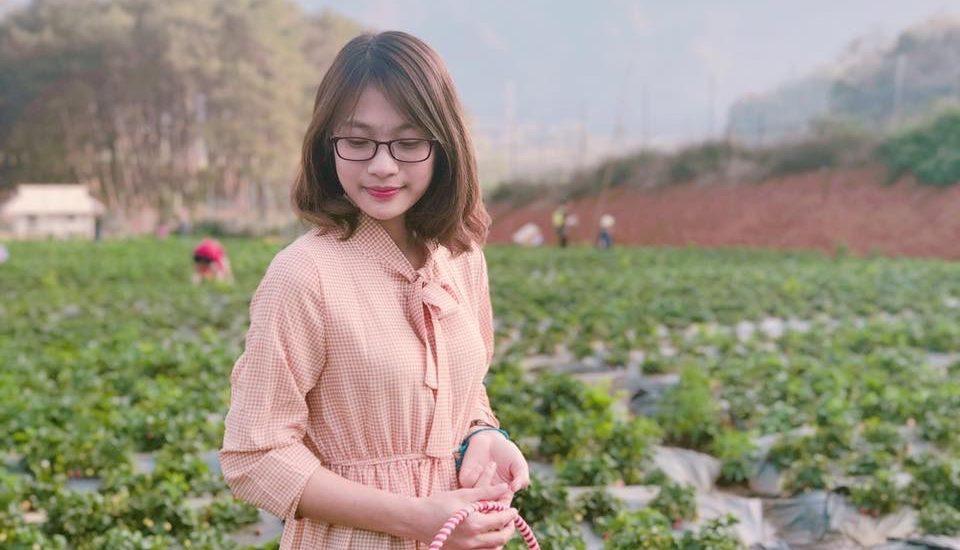 Đánh giá trang trại dâu tây Chimi Farm có nên đi hay không?