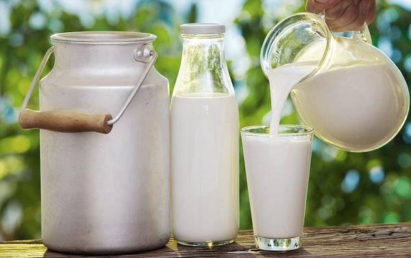 Sữa tươi Mộc Châu - Top 5 đặc sản Mộc Châu bạn nên mua