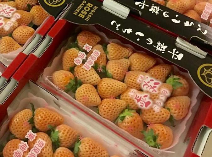 Dâu tây Nhật Bản được nhập khẩu về Việt Na