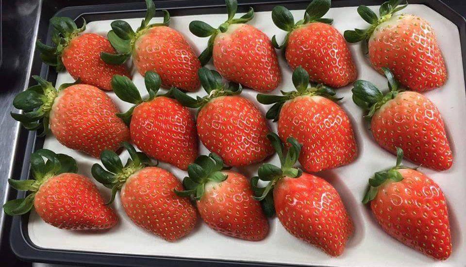 Những trái dâu tây Hàn Quốc tại các siêu thị hoa quả sạch
