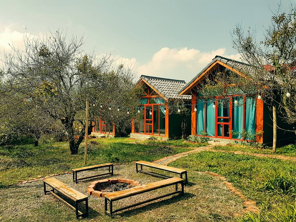 Mama House là các căn nhà gỗ nằm giữa vườn mơ lâu năm