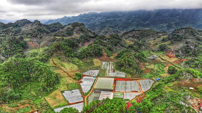 Hình ảnh chụp Trang trại dâu tây Chimi từ trên cao