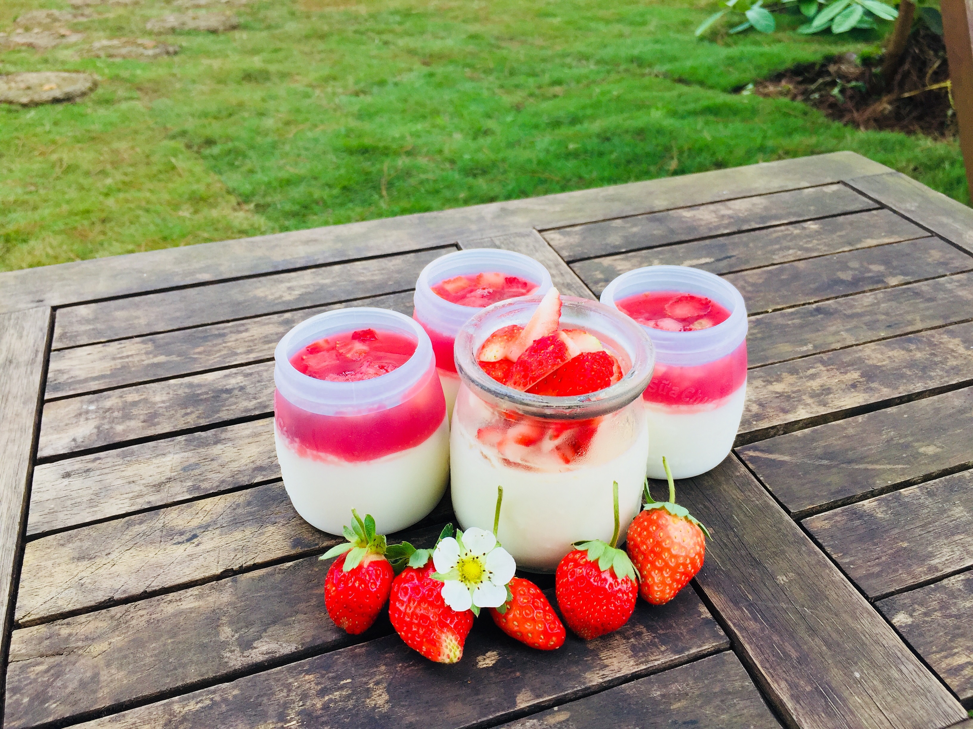 Sữa chua dâu tây được chế biến tại Chimi Farm