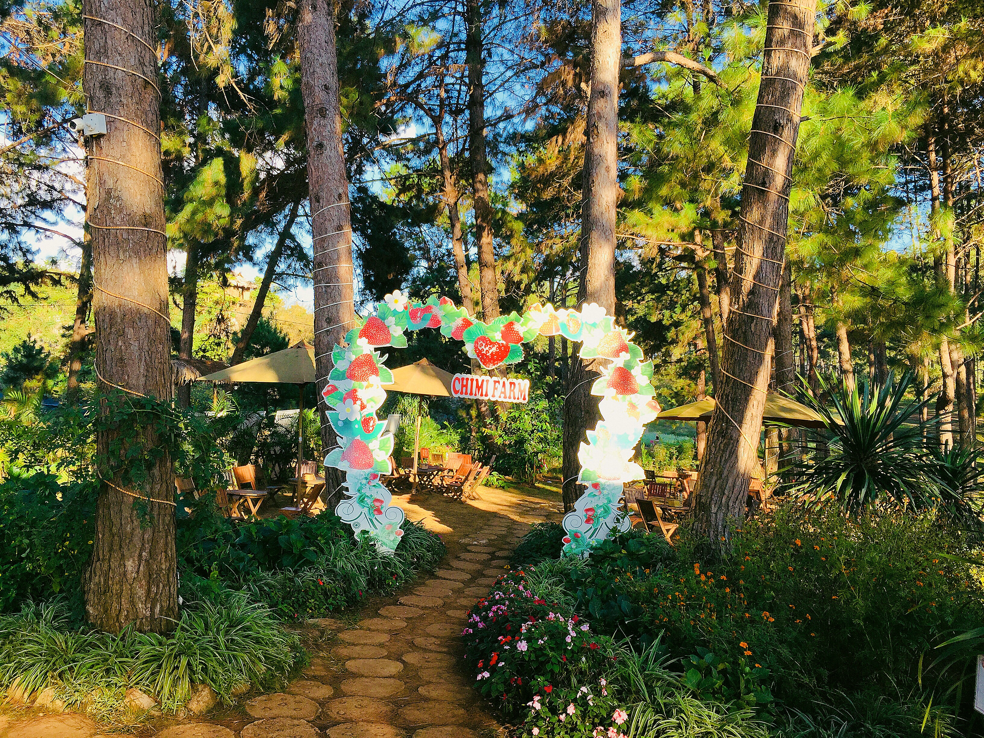 Cổng chào Chimi Farm