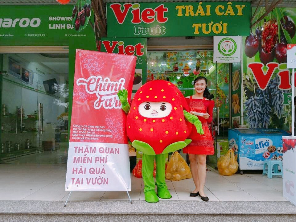 Dâu tây Chimi Farm tại Viet Fruit
