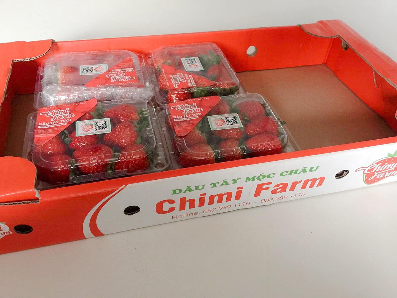 Dâu tây được nhân viên Chimi Farm đóng hộp chuẩn bị giao đến tay khách hàng