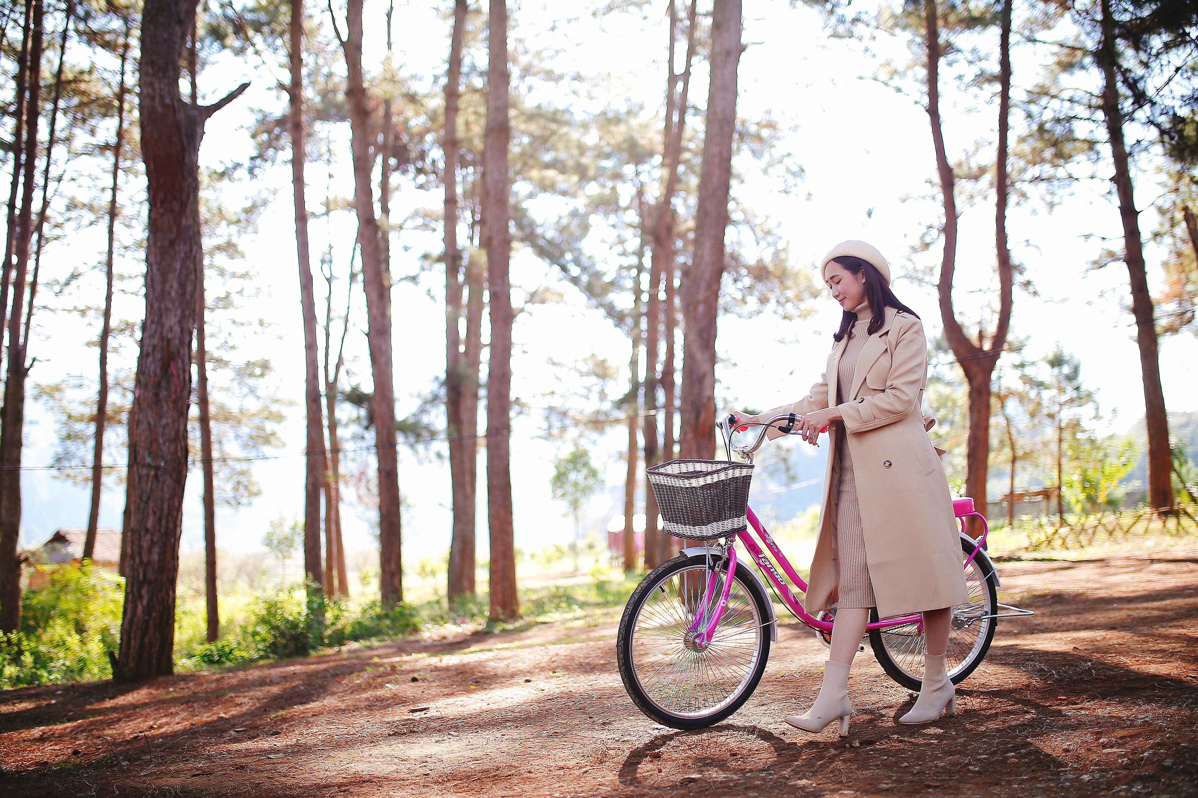 Cảnh quay đi xe đạp trong rừng thông Bản Áng, Mộc Châu