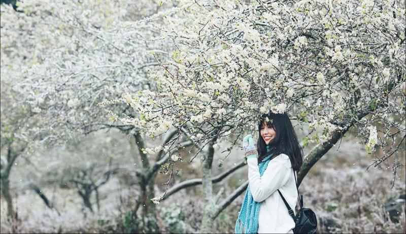Rừng mận Nà Ka là điểm check in nhiều nhất của du khách khi đến Mộc Châu