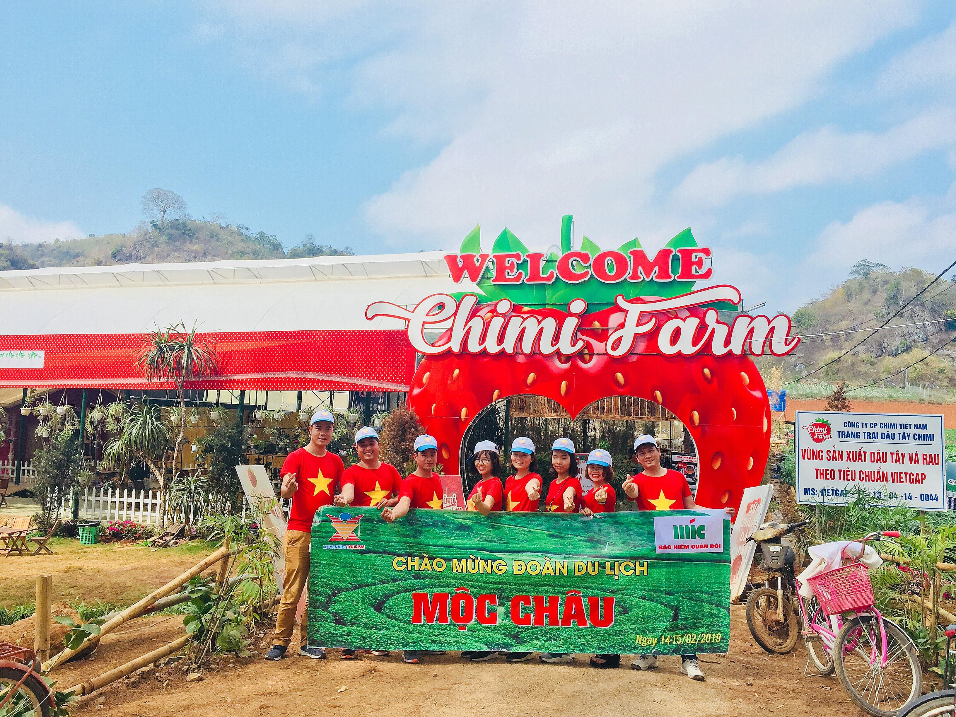 Chính vụ dâu tây Chimi Farm Mộc Châu chín vào tháng mấy?
