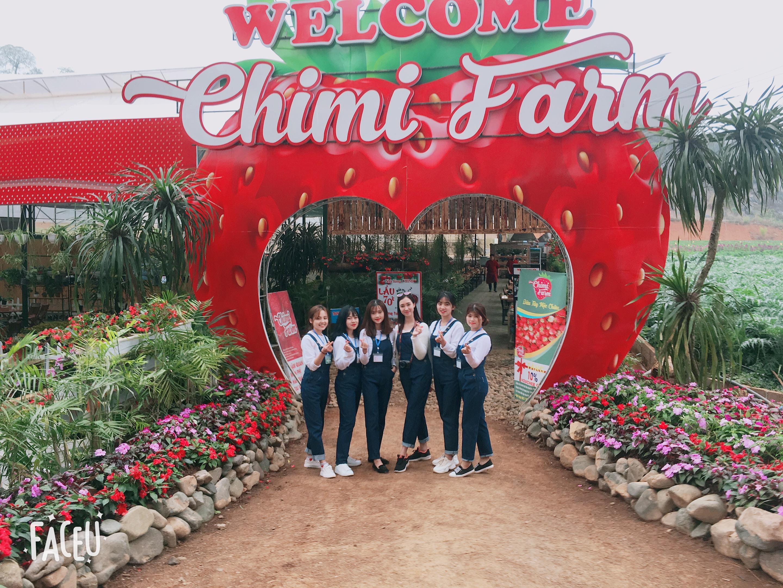 Đội ngũ nhân viên của Trang trại dâu tây Chimi