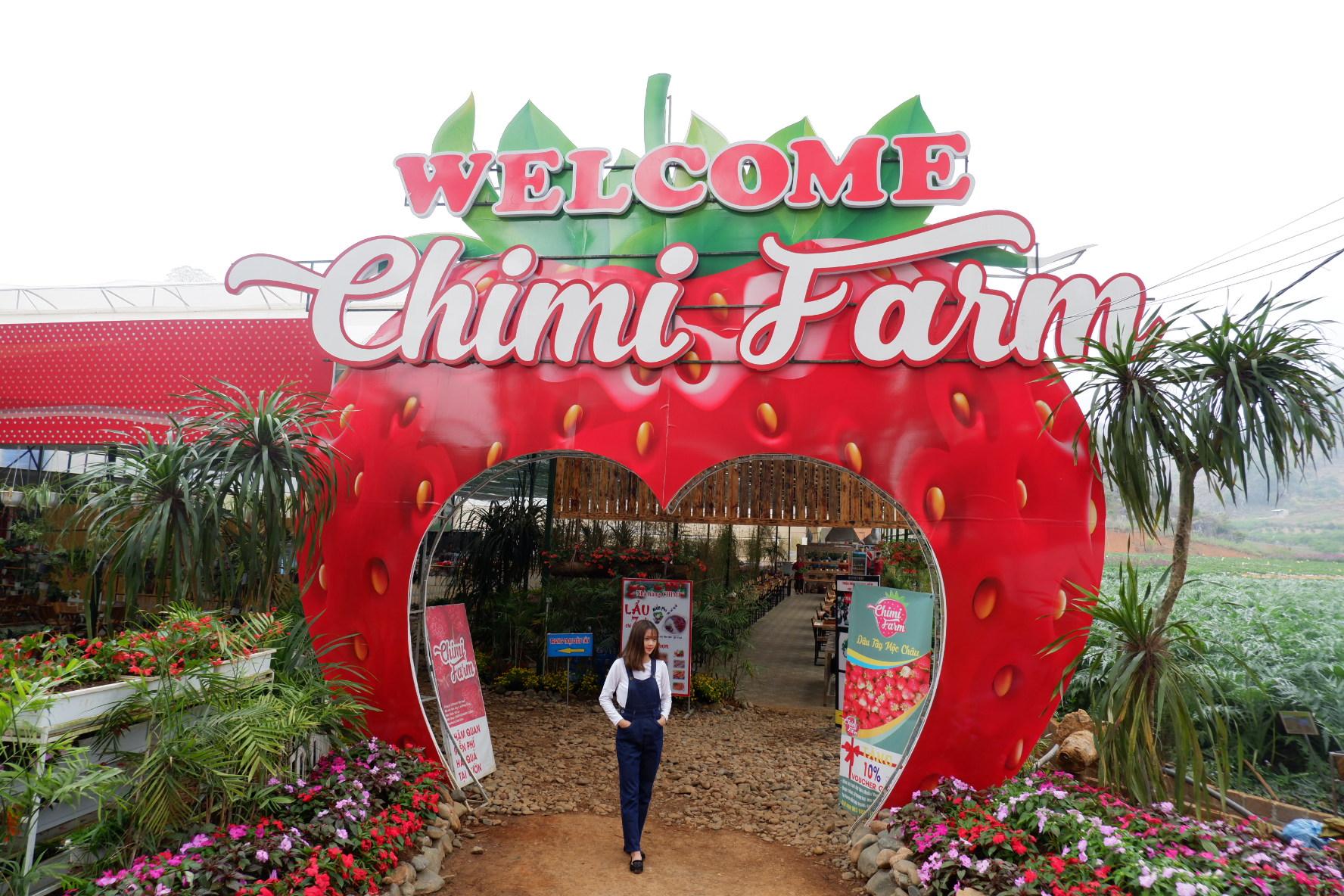Chimi Farm 1 - Kinh nghiệm tham quan và trải nghiệm