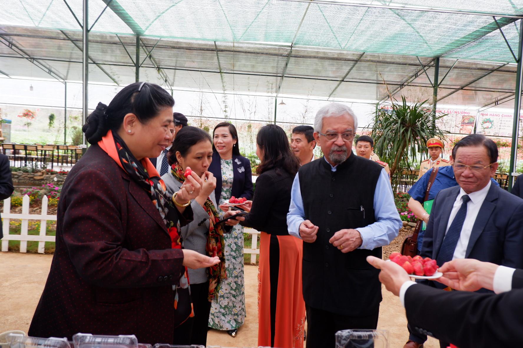 Các vị khách mời được thưởng thức dâu tây tươi và những sản phẩm từ dâu tây được chế biến ngay tại trang trại
