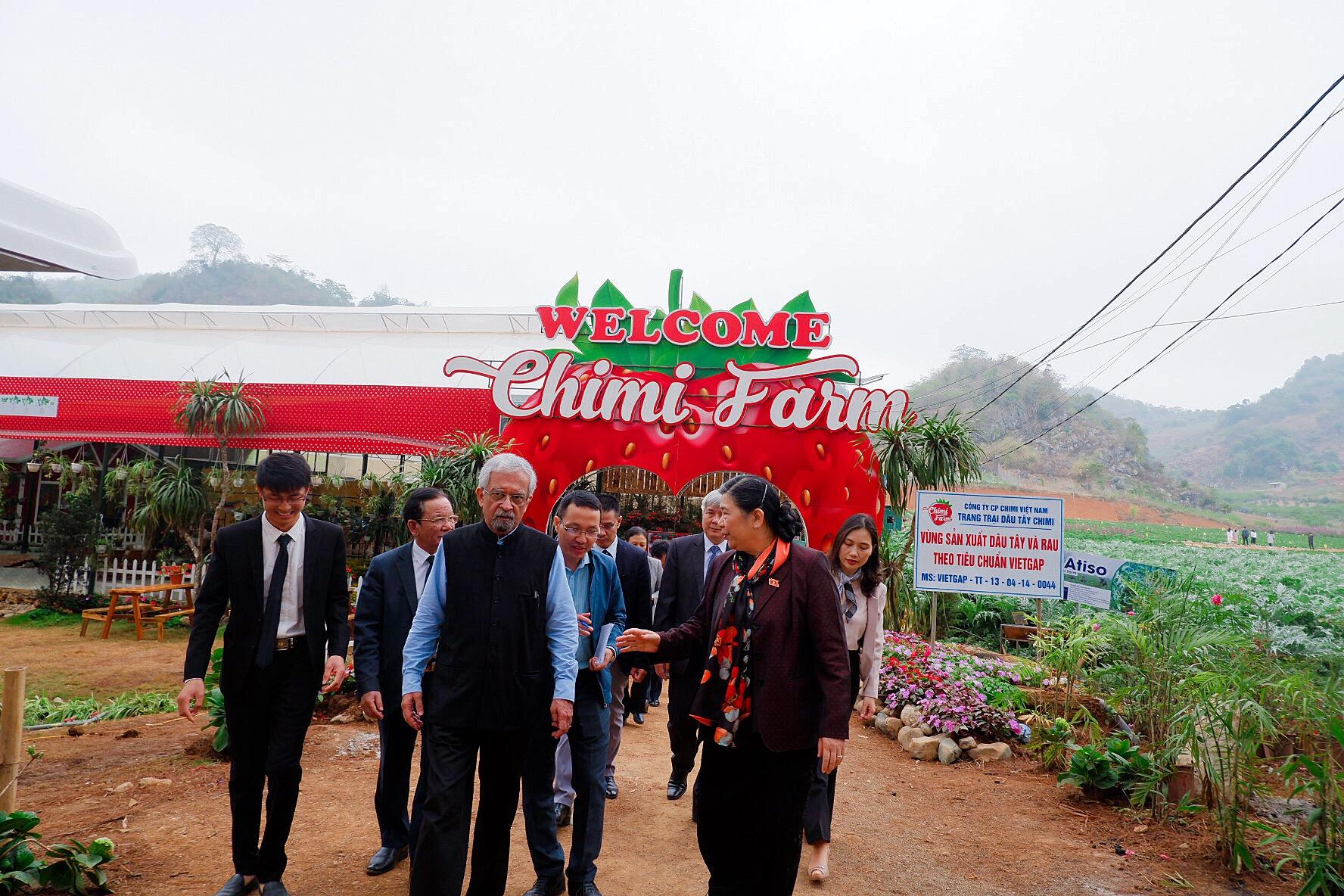 Đoàn khách Quốc hội đến tham quan trang trại dâu tây Chimi