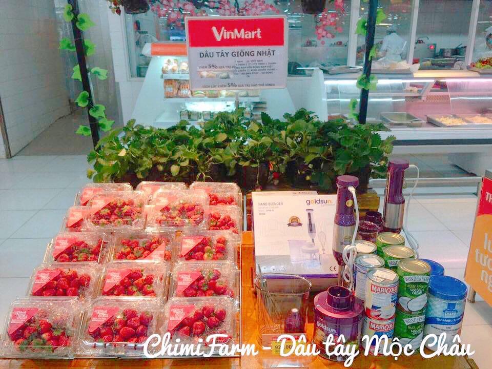 Dâu tây Chimi Farm tại hệ thống siêu thị Vinmart