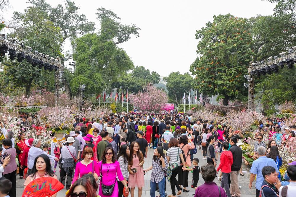 Không khí đông vui tại lễ hội Hoa anh đào