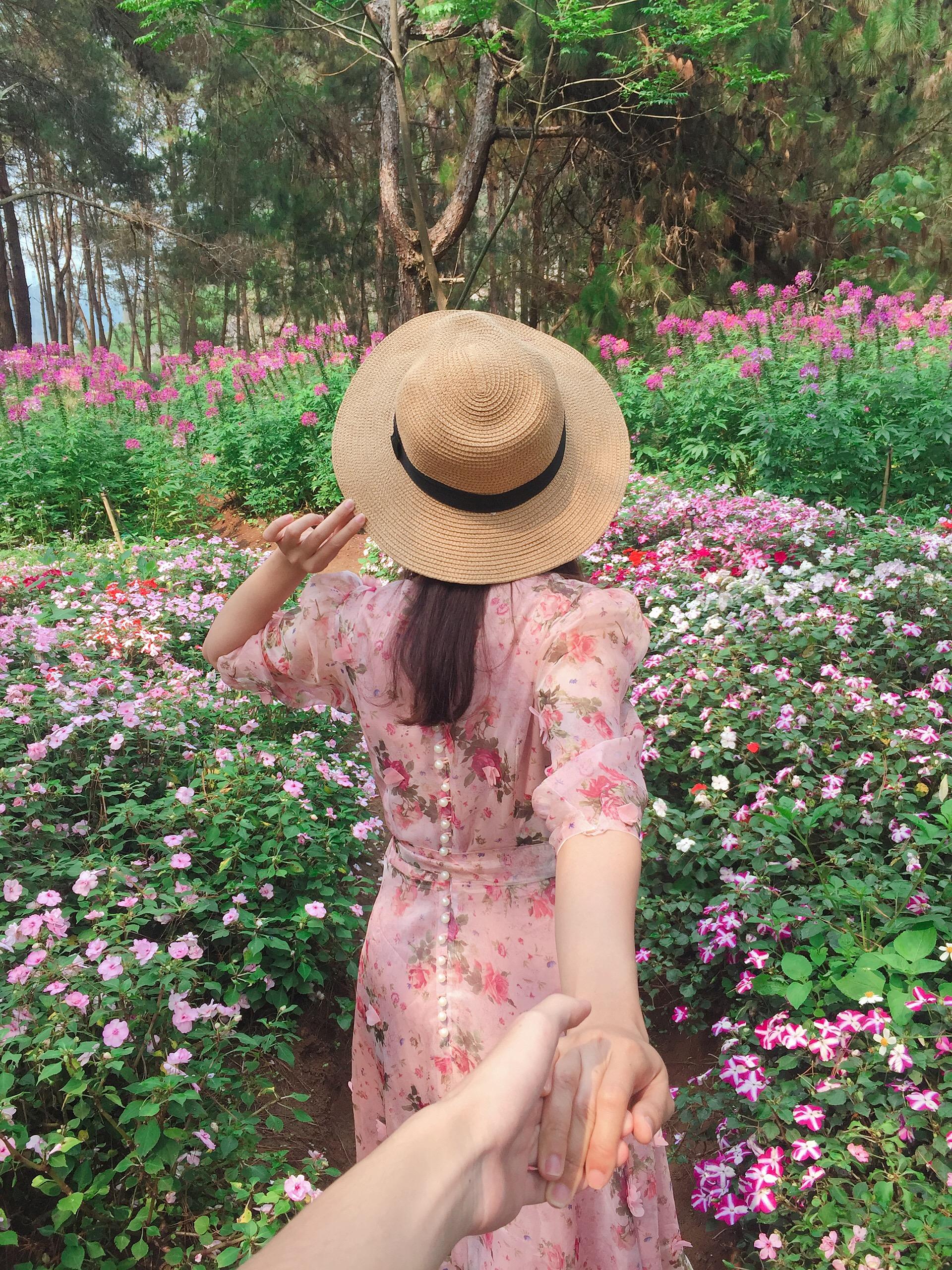 Vườn hoa của trang trại dâu tây Chimi
