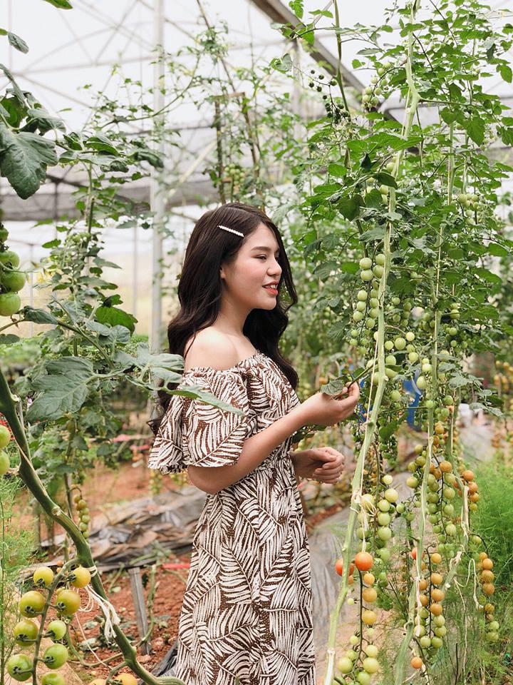 Các cô nàng mê mẩn vườn cà chua cherry của Chimi Farm