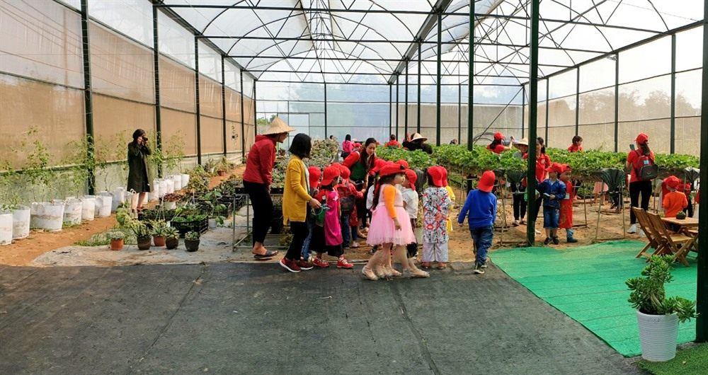 Chimi Farm tuyển hướng dẫn viên làm việc tại Mộc Châu