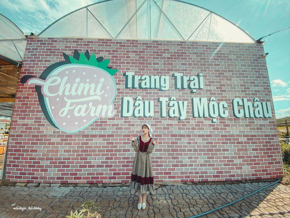 Theo chân cô nàng Maria Tuyền trải nghiệm hái dâu tây tại Chimi Farm