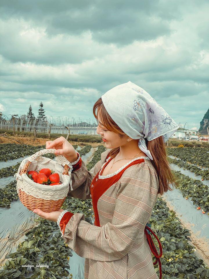 Trang phục hơi hướng vintage rất phù hợp chụp ảnh tại nông trại dâu tây