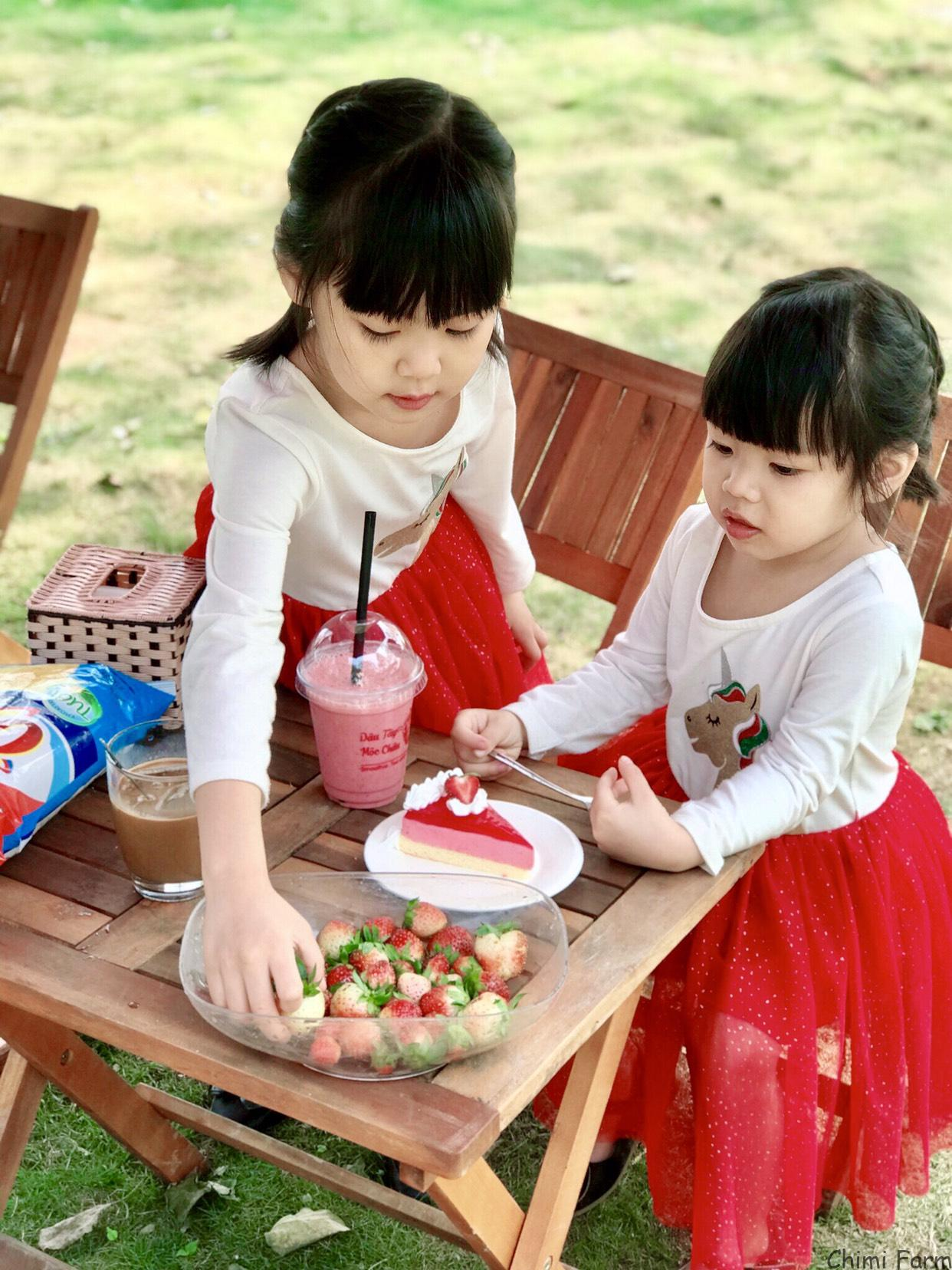 Các bé rất mê các sản phẩm dâu tây của Chimi Farm