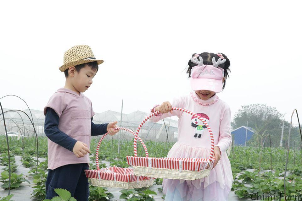Các bé thích thú khi được hòa mình với thiên nhiên