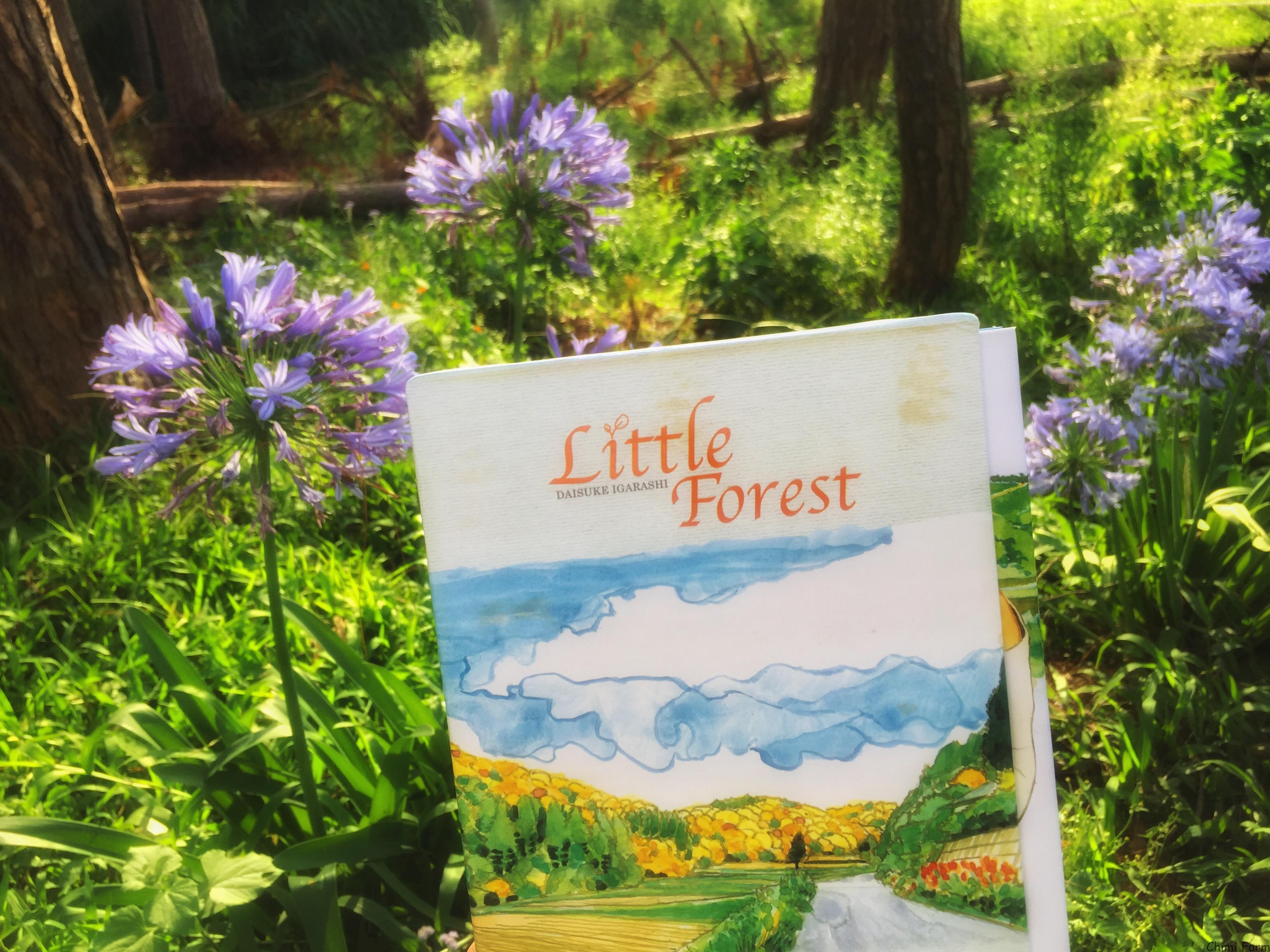 Little forest - Trong tâm hồn mỗi người đều có một Khu rừng nhỏ