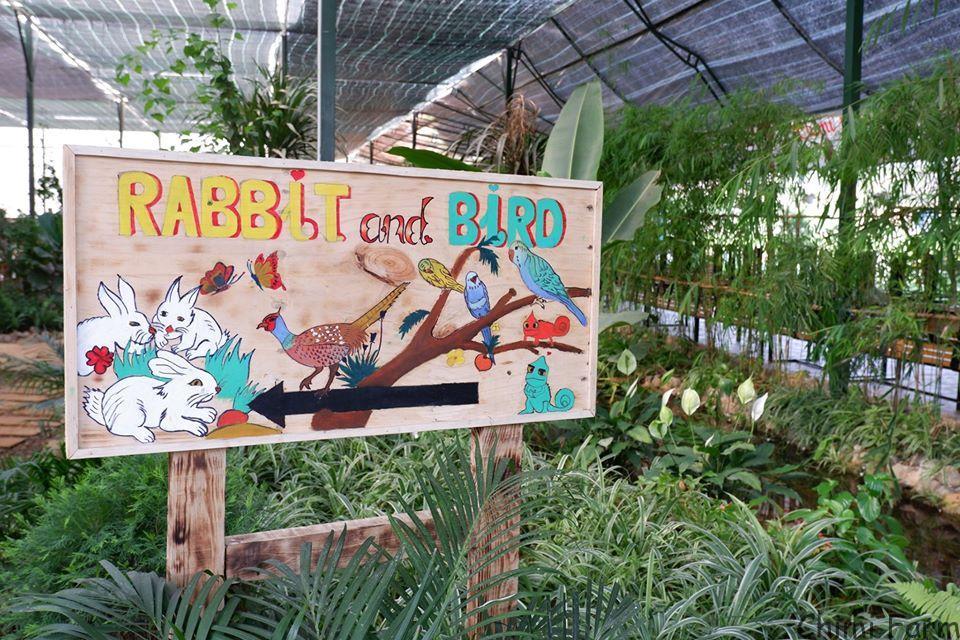 Biển chỉ dẫn vào vườn thú do tự tay các bạn nhân viên Chimi Farm vẽ