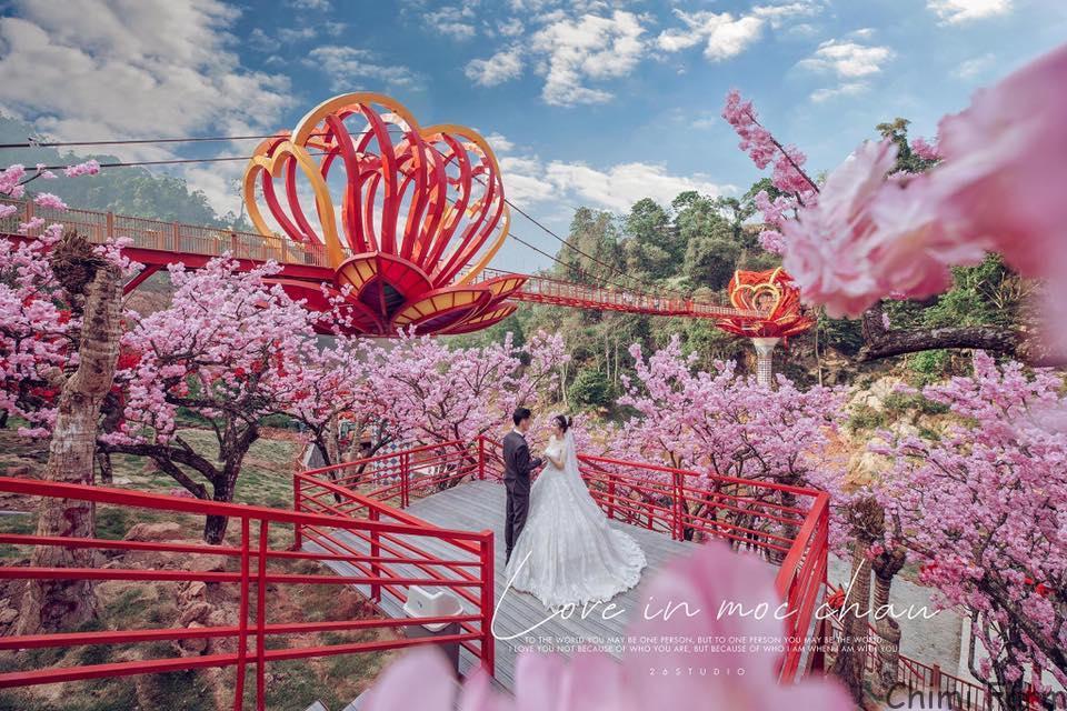 Cầu kính 5D đầu tiên của Việt Nam (Ảnh Fanpage Cầu kính tình yêu Mộc Châu)