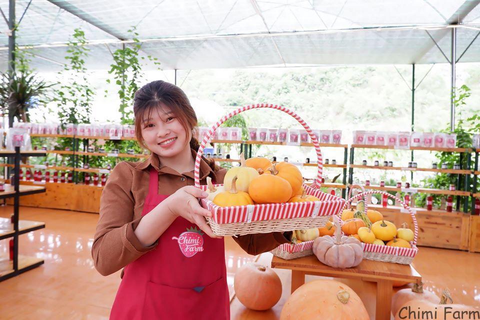 Cô nàng nhân viên xinh đẹp của Chimi Farm đi thu hoạch bí ngô tí hon