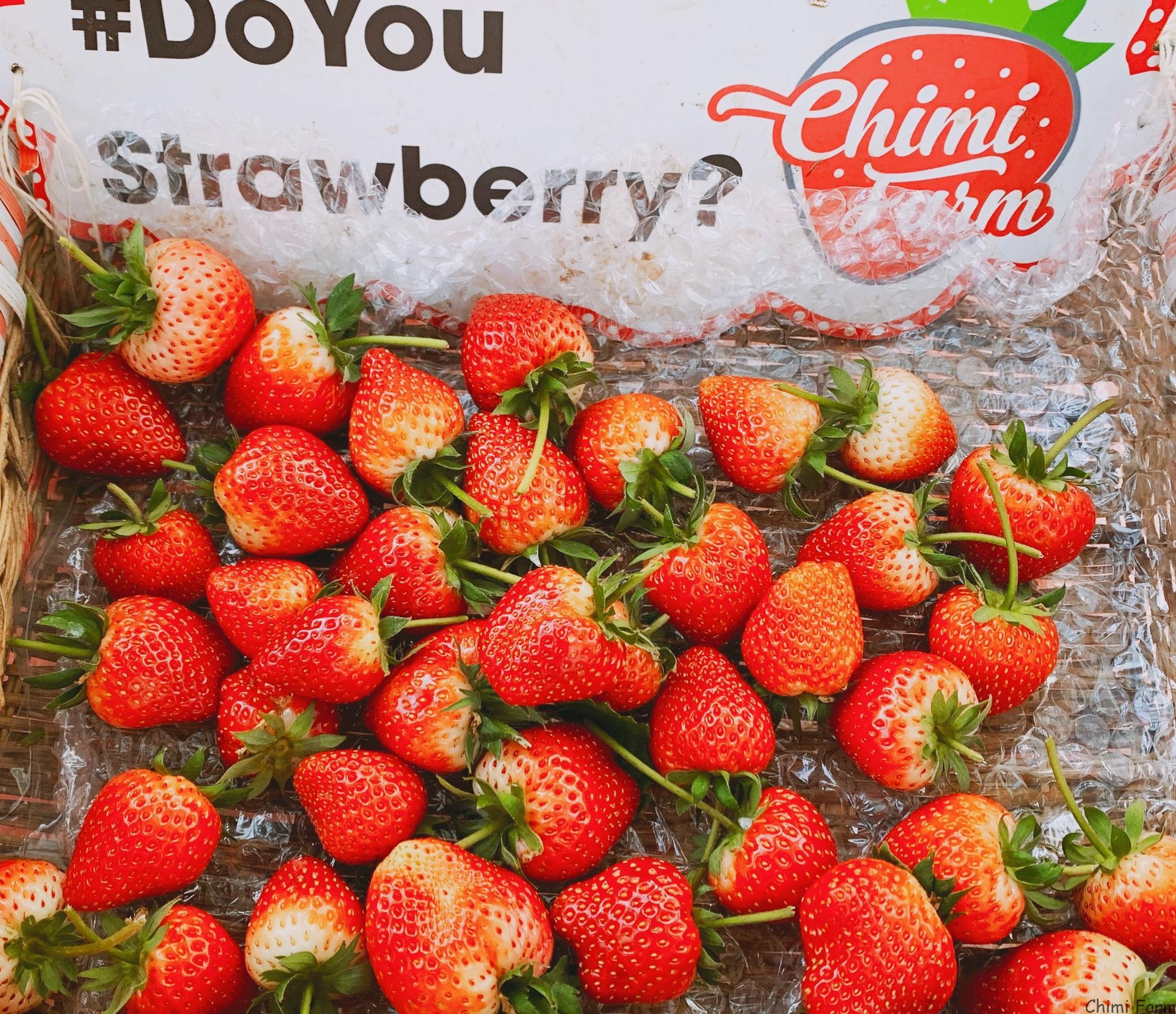 Giỏ dâu tây mang thương hiệu riêng của Chimi Farm
