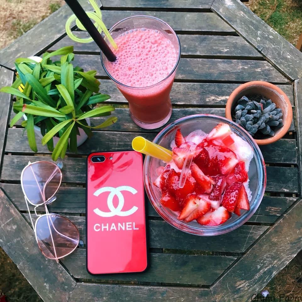 Những món đồ uống tươi như: Sinh tố, nước ép, sữa chua là những món bạn không thể bỏ qua