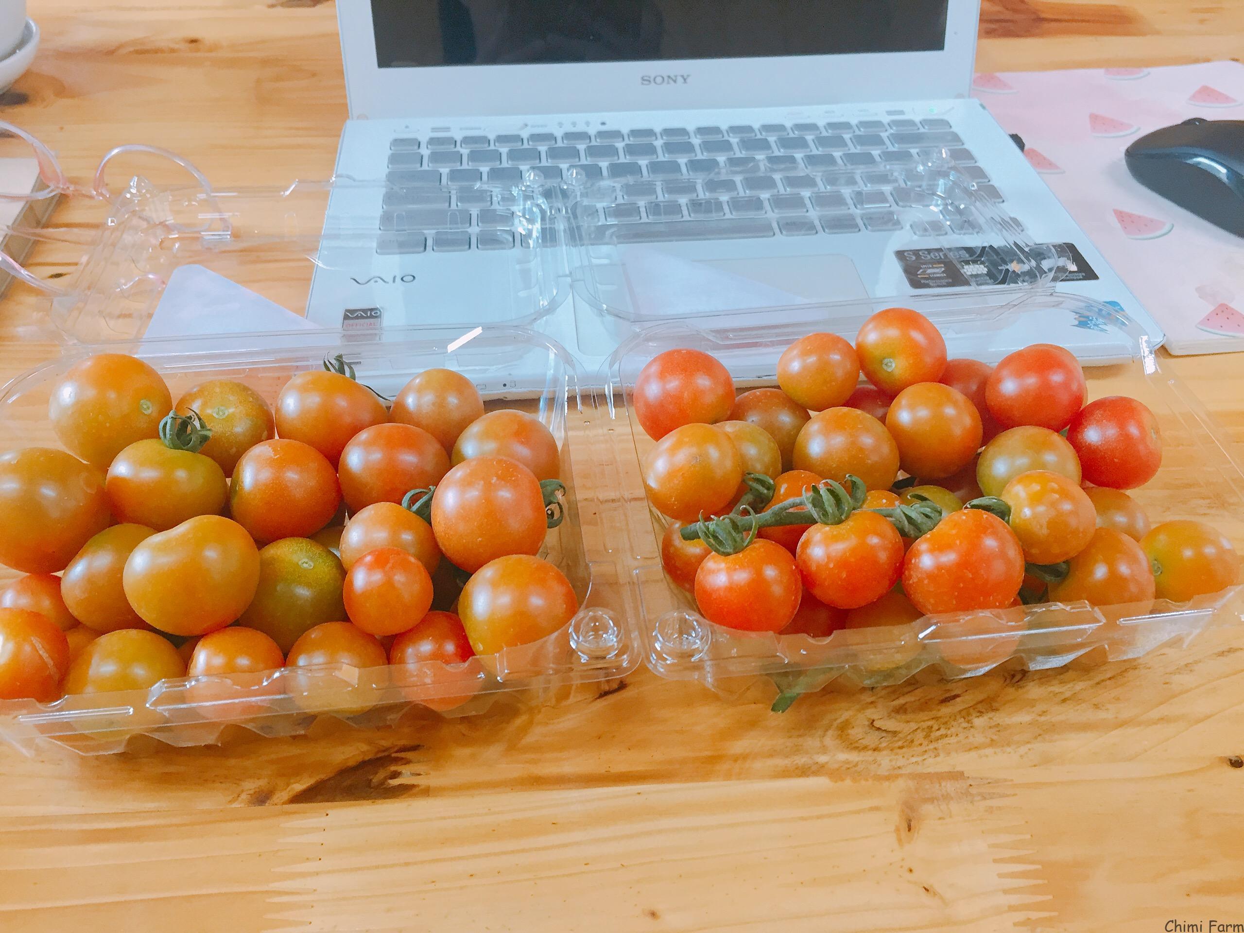 Cà chua Cherry chứa nhiều vitamin A tốt cho mắt