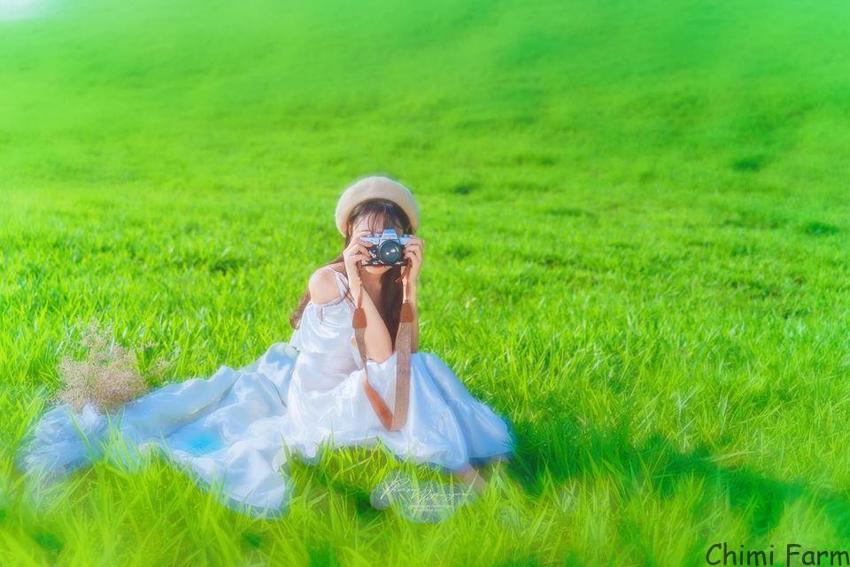 Những cánh đồng cỏ xanh đẹp mơ màng (Ảnh: Dương Mon)
