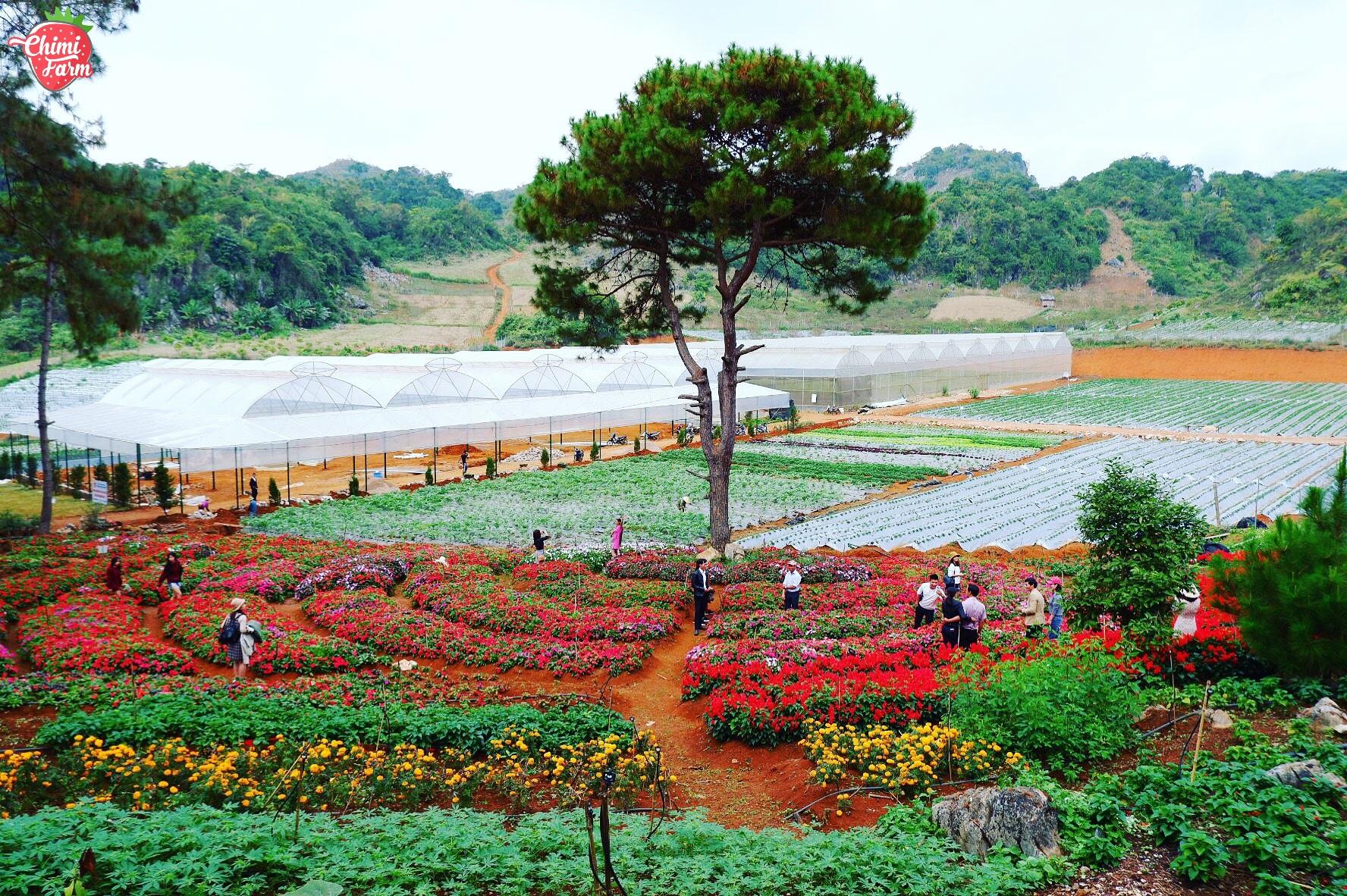Nông trại được đặt ở nơi được thiên nhiên ưu đãi