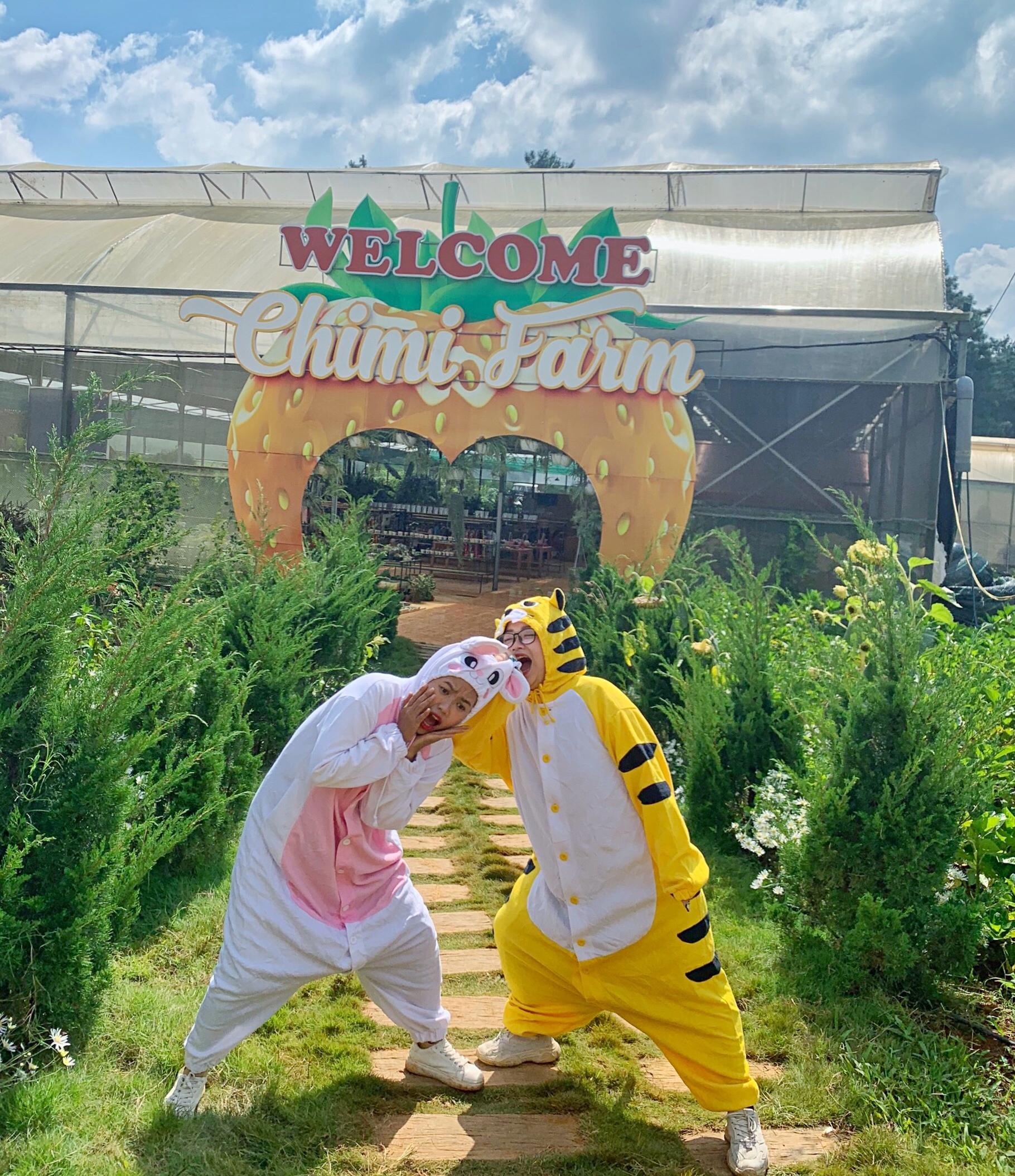 Hổ và thỏ đến thăm trang trại dâu tây Chimi