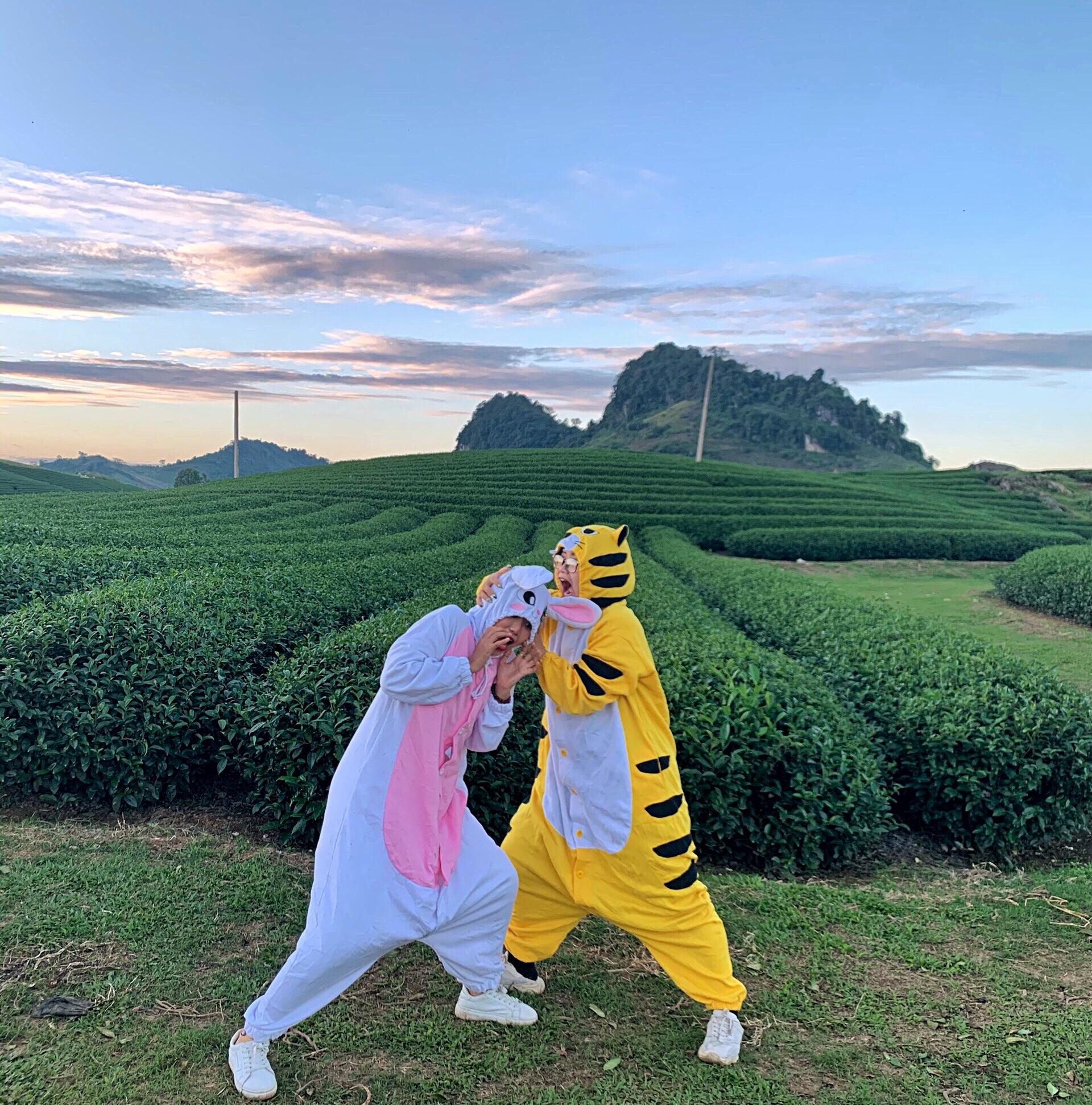 Cười ngất với bộ ảnh hổ và thỏ đi khắp Mộc Châu