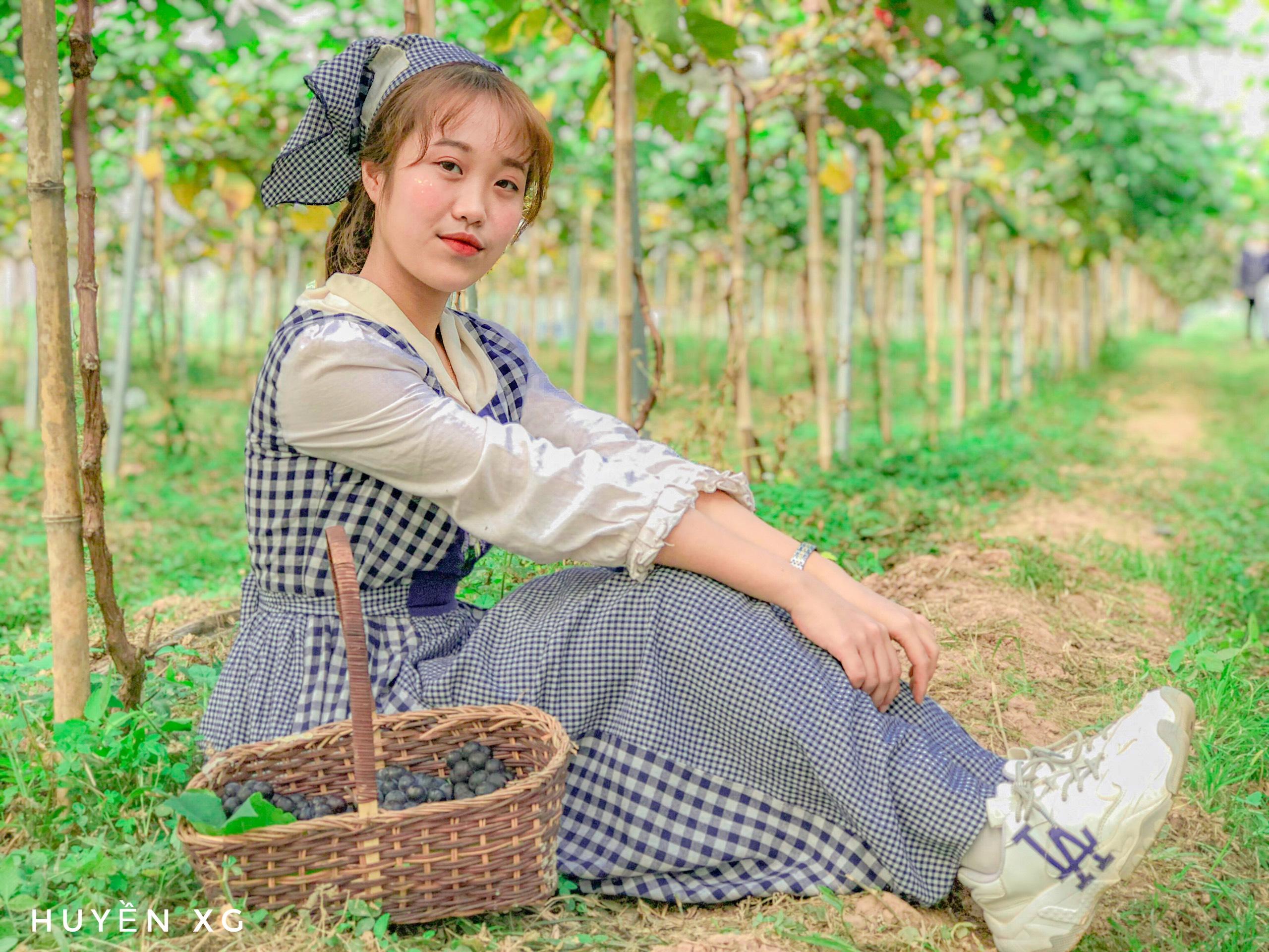 Vườn nho của Chimi Nhật Tân là địa điểm lý tưởng cho bạn vào dịp cuối tuần