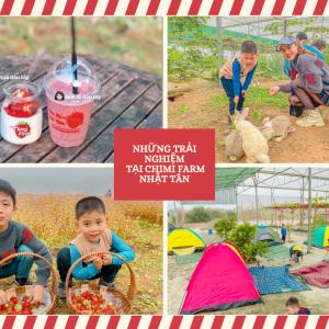 Chimi Farm 4 Nhật Tân