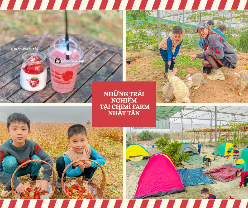 Những trải nghiệm tại Chimi Farm Nhật Tân - Đông Anh