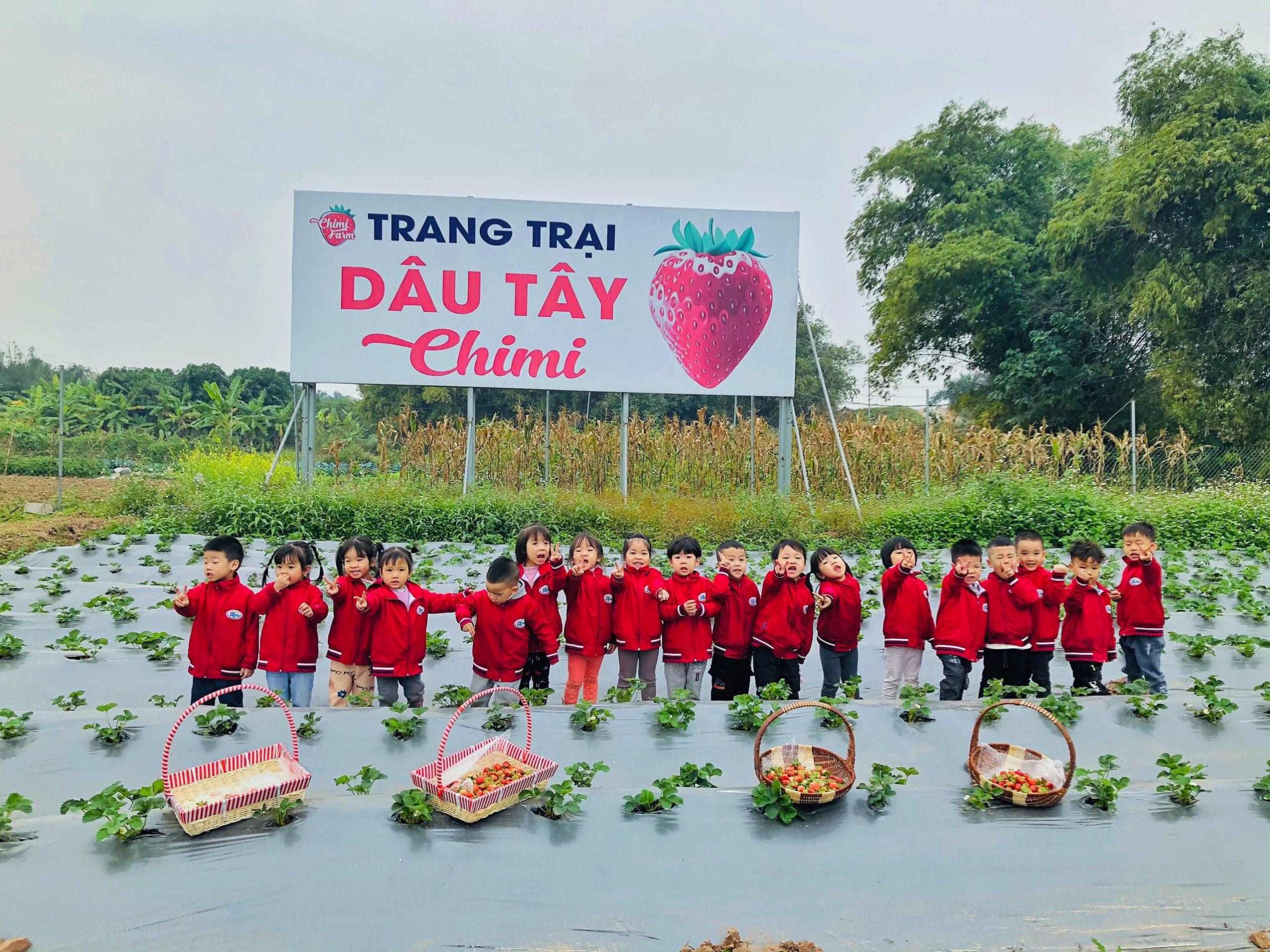 Các bé thích thú khi trải nghiệm Chimi Farm Nhật Tân