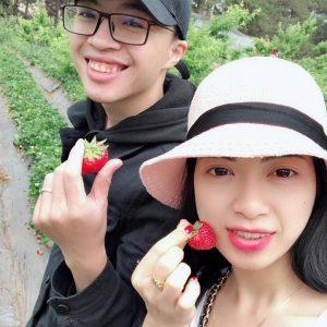 Hái dâu tây Mộc Châu tại Chimi Farm 5(2)