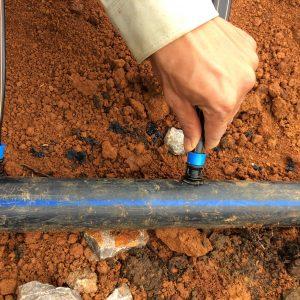 Trồng dâu tây tại Chimi Farm, Lắt đặt hệ thống tưới nước nhỏ giọt