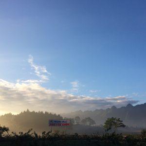 Sáng sớm tại Chimi Farm