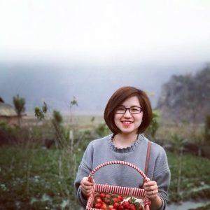 Trải nghiệm hái dâu tây Chimi Farm